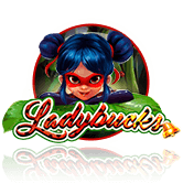 Ladybucks